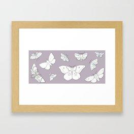 Moth Mania Framed Art Print