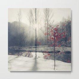winter's rHapsody Metal Print