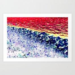 Rocks Water Flowers Art Print