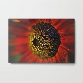 Macro Flower 04 Metal Print