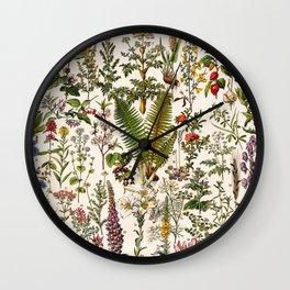 Adolphe Millot - Plantes Medicinales B - French vintage poster Wall Clock