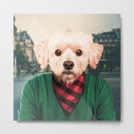 Urban Dog Metal Print