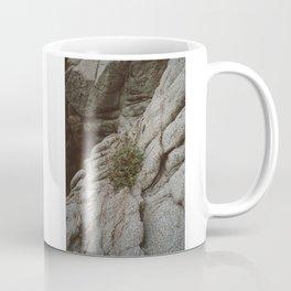 Mexico Mountainside II Coffee Mug