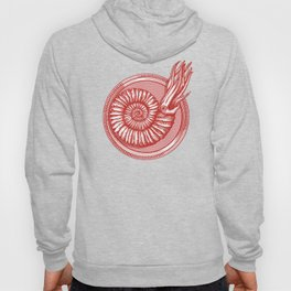 AMMONITE COLLECTION RED Hoody