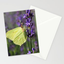 Butterfly on Lavender Stationery Cards
