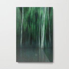 Shadow In The Woods Metal Print