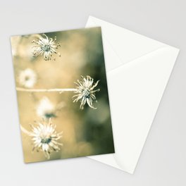 How Long Stationery Cards