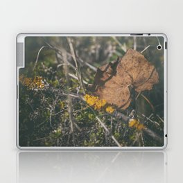 First signs of autumn Laptop & iPad Skin