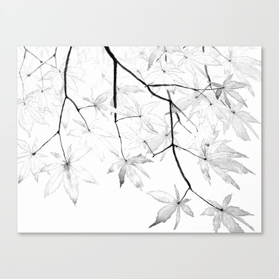 black and white maple leaves Canvas Print