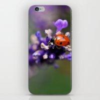 ladybug iPhone & iPod Skins featuring Ladybug by Nathalie Photos