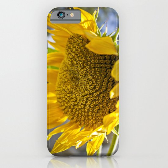 Take Cover [SUNFLOWER] iPhone & iPod Case
