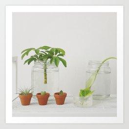 Green plants Art Print