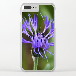 Under Clear Skies Clear iPhone Case