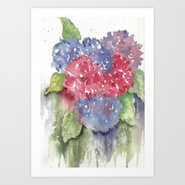 Earths Splendor Art Print