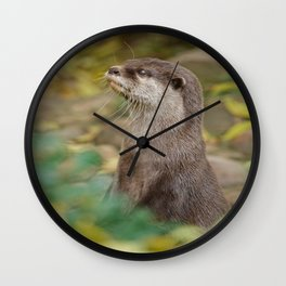 Otter Amongst Autumn Leaves Wall Clock