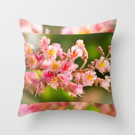 Aesculus red chestnut tree blossoms Throw Pillow