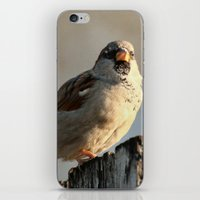 lonely iPhone & iPod Skins featuring Independent! by IowaShots