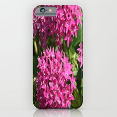 pink stars Slim Case iPhone 6s