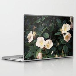 Snowwhite Laptop & iPad Skin