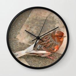 Lovely runaway canary bird Wall Clock
