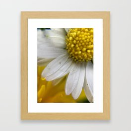 Daisies, Love, & Math Framed Art Print