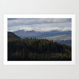 Pinecone Viewpoint Art Print