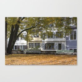 fall in Zurich Canvas Print