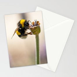 Flower Bee Stationery Cards