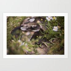 Easter babies Art Print