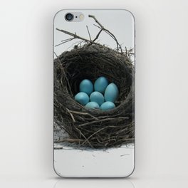 Nest is Best iPhone Skin