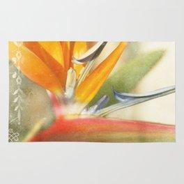 Bird of Paradise - Strelitzea reginae - Tropical Flowers of Hawaii Rug