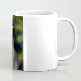 Angry Squirrel Coffee Mug