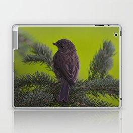 Feathered Friend Laptop & iPad Skin