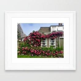 Rose House in Sconset Nantucket Framed Art Print