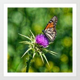 monarch with mustard Art Print
