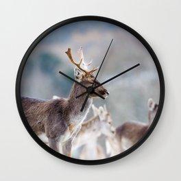 SLEEPY FALLOW DEER Wall Clock