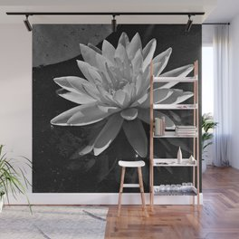 Water Lily lll Wall Mural