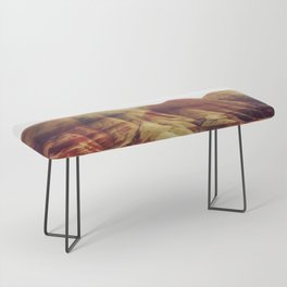 Oregon Painted Hills Bench