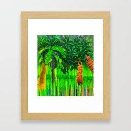 Palm's Rainbow Roots Framed Art Print