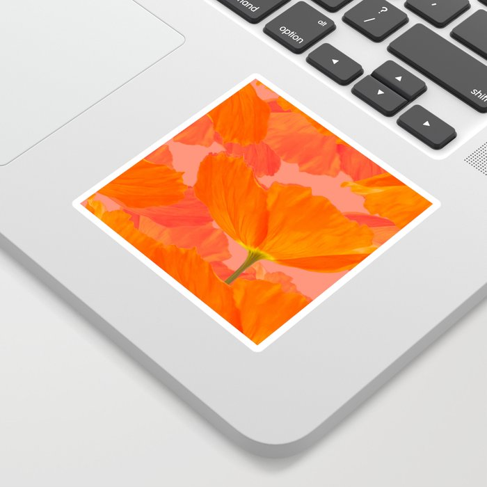 Beautiful Poppies Coral Color Background #decor #society6 #buyart Sticker