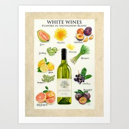 WHITE WINES - Flavors in Sauvignon Blanc Art Print