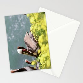 California Brown Pelican Stationery Cards