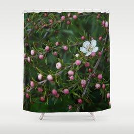 Leptospermum Cardwell Shower Curtain