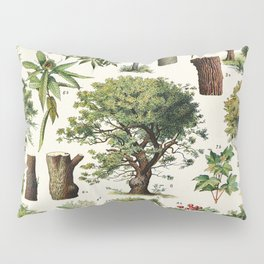 Adolphe Millot - Arbres A - French vintage botanical poster Pillow Sham