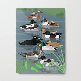 Wild ducks Metal Print