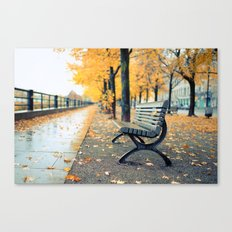 A lonely day for a walk Canvas Print