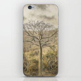 Ceiba Tree at Forest Guayas Ecuador iPhone Skin