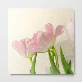 Posterised petals Metal Print