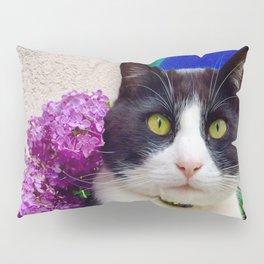 Orazio charming cat in the blue Pillow Sham