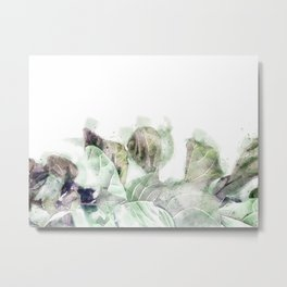Fiddle Leaf Fern 01 Metal Print